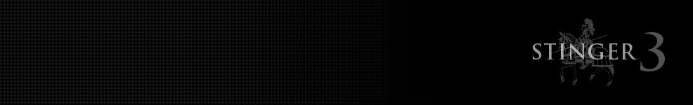 (写真3)シンプルなテンプレートStinger3