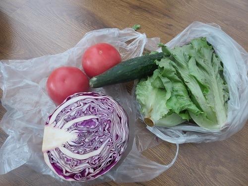 (写真3)野菜市場で購入したレタス、きゅうり、トマトなど