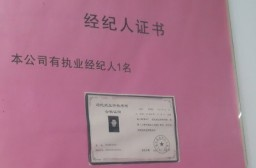(写真1)不動産仲介会社には資格保有者の証書が飾られている
