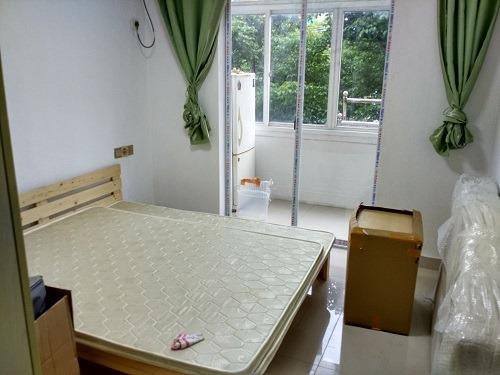 (写真2)採光バツグンの部屋、日中は電気を付けなくても問題ない