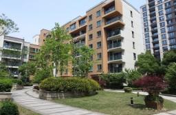 (写真1)広々とした敷地内の共有スペースは建築面積に配分されている