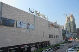 (写真1)東莞市万江区でひと際目立つ存在の華南MALL(広東省・東莞市)